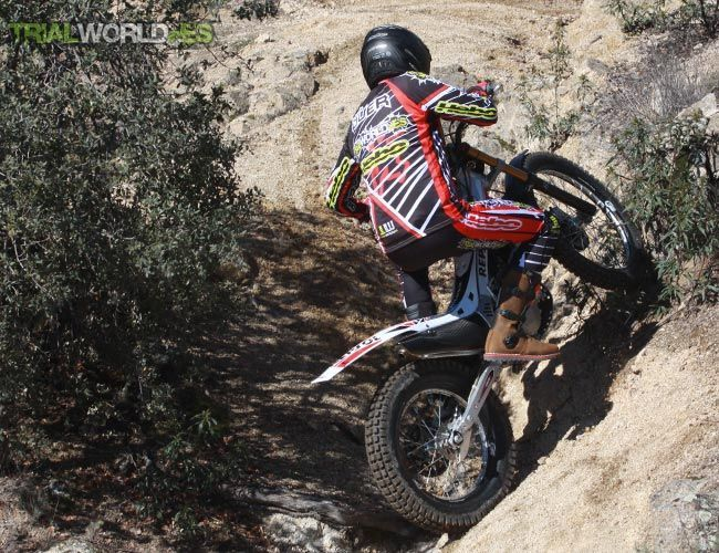 Montesa Dunlop D803GP Trial