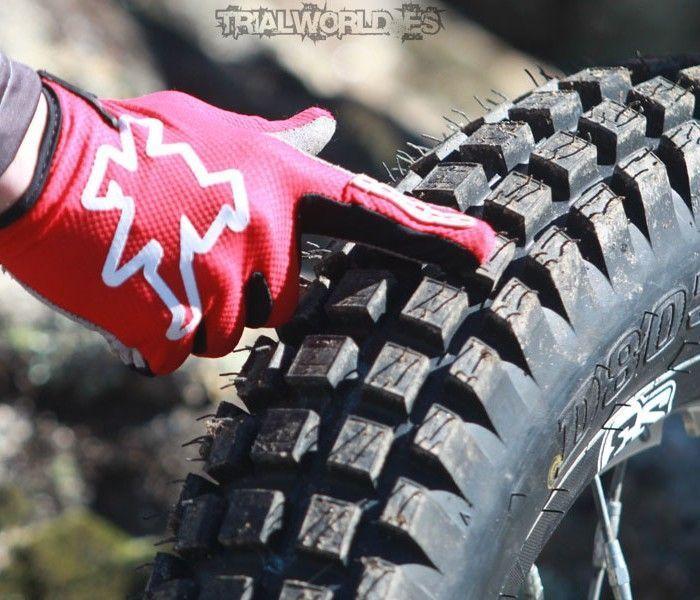 Nuevos Dunlop D803GP Trial [VIDEO]