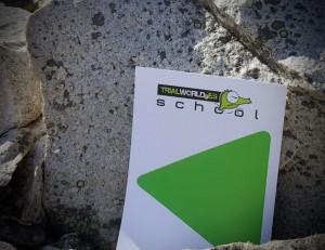 flechas niveles trial